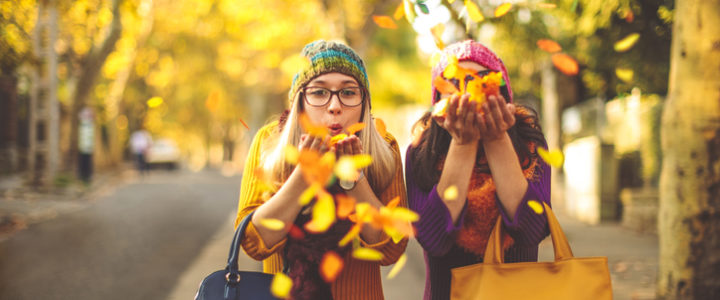 Our Guide to Fall Activities for Kids this Season at The Market at 1488